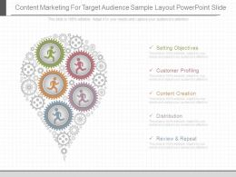 Content Marketing For Target Audience Sample Layout Powerpoint Slide