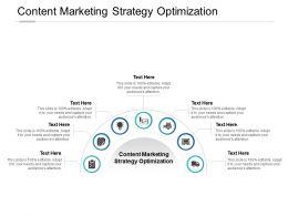 Content Marketing Strategy Optimization Powerpoint Presentation Portfolio Structure Cpb