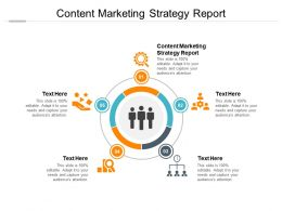 Content Marketing Strategy Report Ppt Powerpoint Presentation Visual Aids Files Cpb
