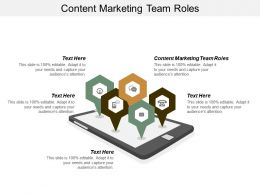 Content Marketing Team Roles Ppt Powerpoint Presentation Infographic Template Professional Cpb
