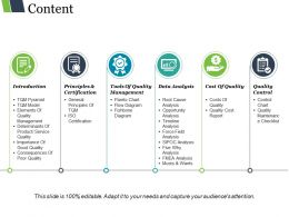 Content Ppt Presentation Examples