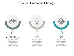 Content Promotion Strategy Ppt Powerpoint Presentation Ideas Example Cpb