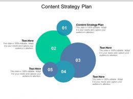 Content Strategy Plan Ppt Powerpoint Presentation Icon Show Cpb