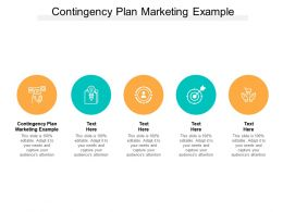 Contingency Plan Marketing Example Ppt Powerpoint Presentation Slides Professional Cpb