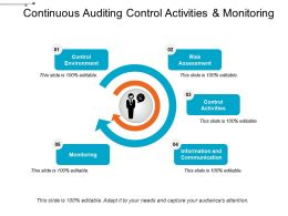 Continuous Auditing Control Activities And Monitoring