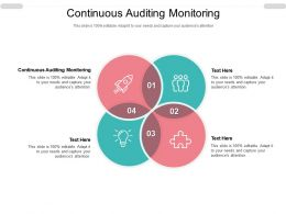 Continuous Auditing Monitoring Ppt Powerpoint Presentation Infographic Template Gallery Cpb