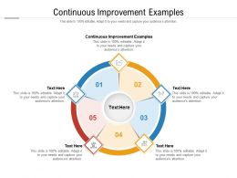 Continuous Improvement Examples Ppt Powerpoint Outline Design Templates Cpb