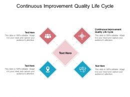 Continuous Improvement Quality Life Cycle Ppt Powerpoint Presentation Ideas Cpb