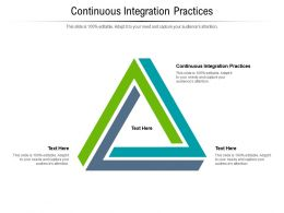 Continuous Integration Practices Ppt Powerpoint Presentation Designs Download Cpb
