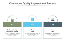 Continuous Quality Improvement Process Ppt Powerpoint Presentation Show Cpb