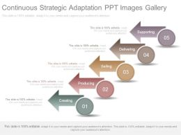 Continuous Strategic Adaptation Ppt Images Gallery