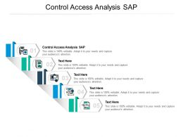 Control Access Analysis SAP Ppt Powerpoint Presentation Professional Designs Download Cpb