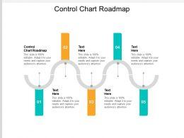 Control Chart Roadmap Ppt Powerpoint Presentation Portfolio Slide Portrait Cpb