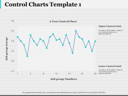 Control Charts Investment Ppt Infographic Template Infographic Template