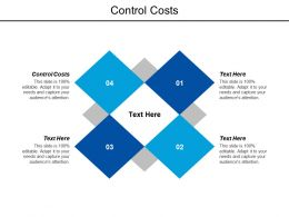 Control Costs Ppt Powerpoint Presentation Gallery Ideas Cpb