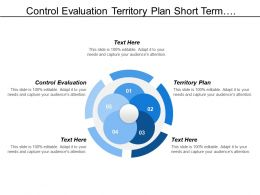 Control Evaluation Territory Plan Short Term Business Plan
