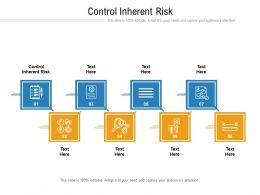 Control Inherent Risk Ppt Powerpoint Presentation Outline Show Cpb