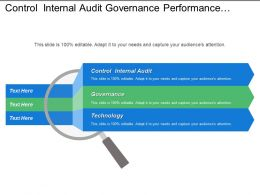 Control Internal Audit Governance Performance Measurement