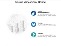 Control Management Review Ppt Powerpoint Presentation Infographic Template Skills Cpb