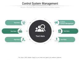 Control System Management Ppt Powerpoint Presentation Infographics Microsoft Cpb