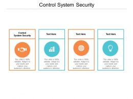 Control System Security Ppt Powerpoint Presentation Layout Cpb
