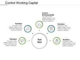 Control Working Capital Ppt Powerpoint Presentation Show Demonstration Cpb