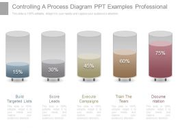 Controlling A Process Diagram Ppt Examples Professional