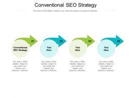 Conventional Seo Strategy Ppt Powerpoint Presentation Professional Template Cpb