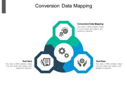 Conversion Data Mapping Ppt Powerpoint Presentation Ideas Influencers Cpb
