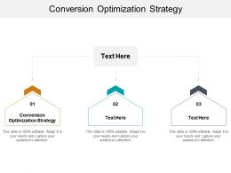 Conversion Optimization Strategy Ppt Powerpoint Presentation Slides Sample Cpb
