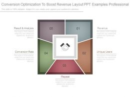 Conversion Optimization To Boost Revenue Layout Ppt Examples Professional