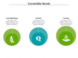 Convertible Bonds Ppt Powerpoint Presentation Pictures Smartart Cpb
