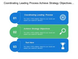 Coordinating Leading Process Achieve Strategy Objectives Annual Planning