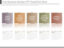 Core Business Activities Ppt Powerpoint Show