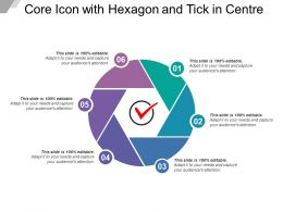 Core Icon With Hexagon And Tick In Centre