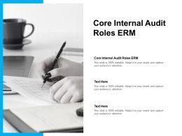 Core Internal Audit Roles Erm Ppt Powerpoint Presentation Show Files Cpb
