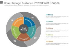 Core Strategic Audience Powerpoint Shapes