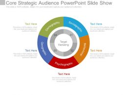 Core Strategic Audience Powerpoint Slide Show