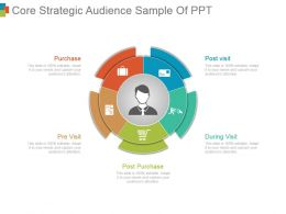 Core Strategic Audience Sample Of Ppt
