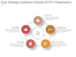 Core Strategic Audience Sample Of Ppt Presentation