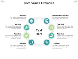 Core Values Examples Ppt Powerpoint Presentation Portfolio Show Cpb