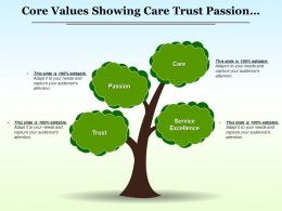 Core Values Showing Care Trust Passion Service Excellence
