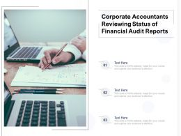 Corporate Accountants Reviewing Status Of Financial Audit Reports