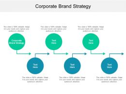 Corporate Brand Strategy Ppt Powerpoint Presentation Layouts Example Topics Cpb