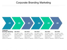 Corporate Branding Marketing Ppt Powerpoint Presentation Summary Graphics Template Cpb