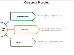 Corporate Branding Ppt Powerpoint Presentation Ideas Summary Cpb