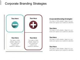 Corporate Branding Strategies Ppt Powerpoint Presentation Infographic Template Gallery Cpb