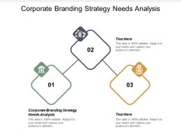 Corporate Branding Strategy Needs Analysis Ppt Powerpoint Presentation Portfolio Cpb