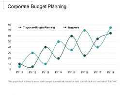 Corporate Budget Planning Ppt Powerpoint Presentation Portfolio Samples Cpb