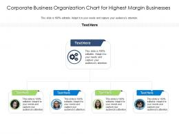 Corporate Business Organization Chart For Highest Margin Businesses Infographic Template